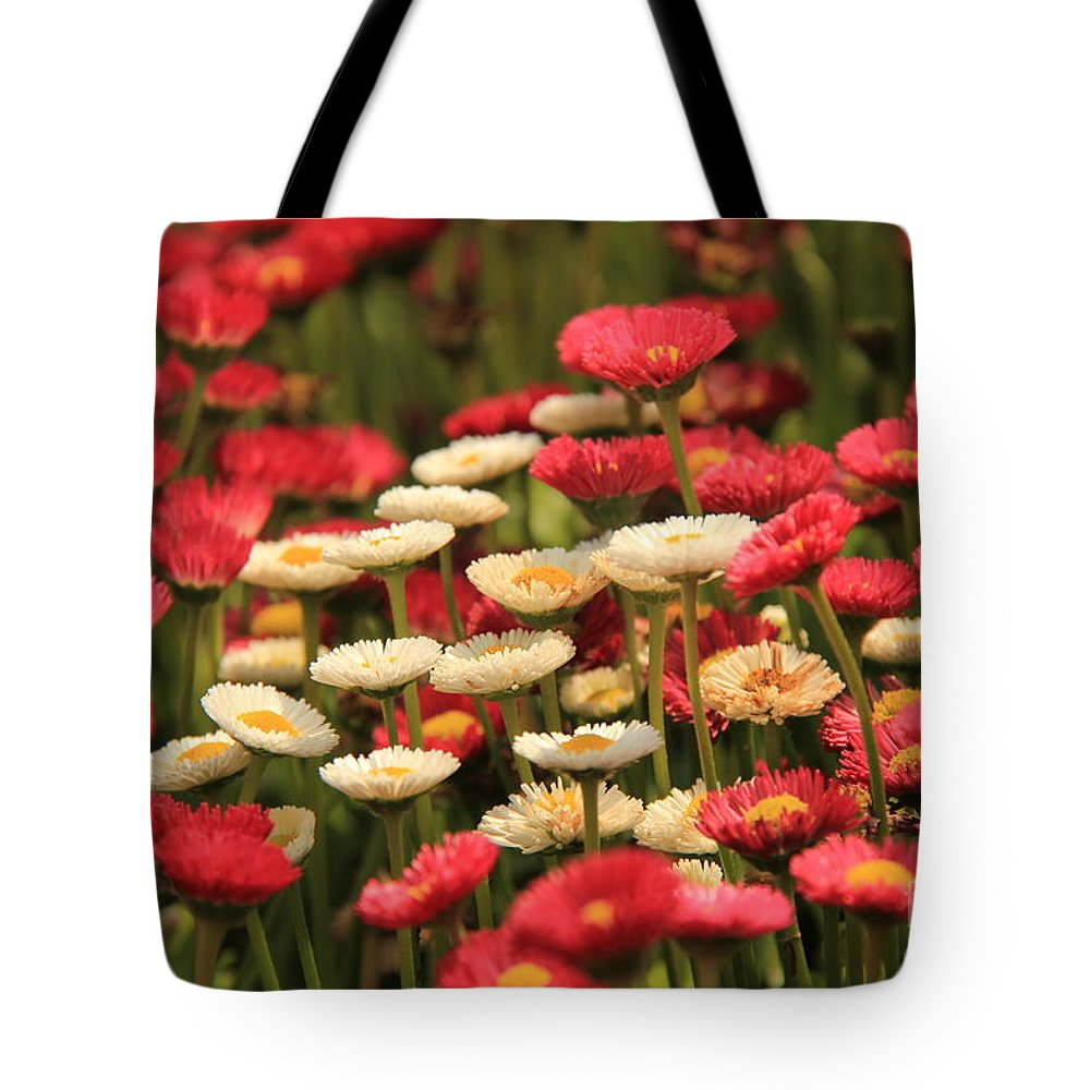 Flower Bed Tote Bag featuring the photograph Flower Bed by Onie Dimaano