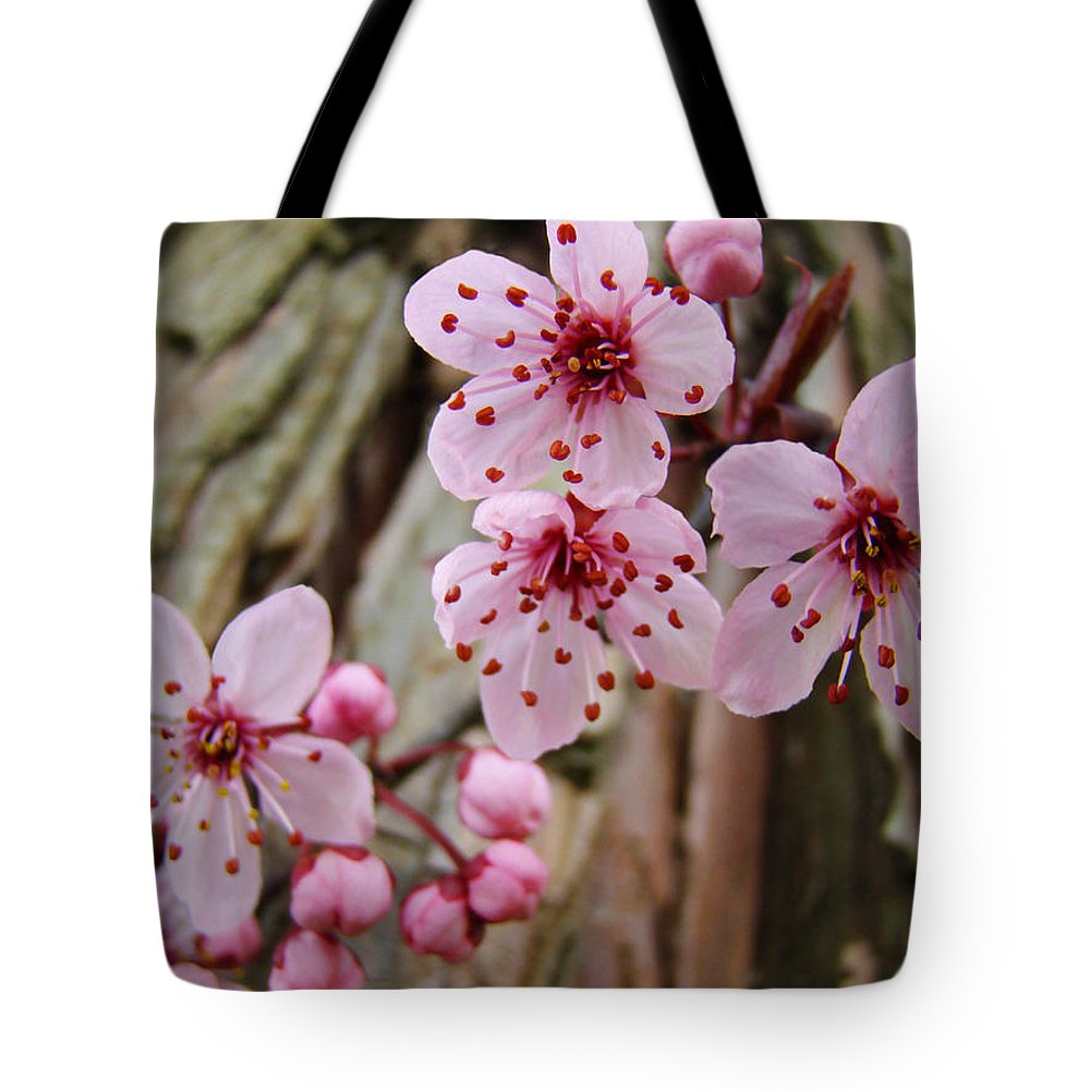 Tree Tote Bag featuring the photograph Flower Blossoms Pink Tree Blossoms Art Print Giclee Spring Flowers by Baslee Troutman
