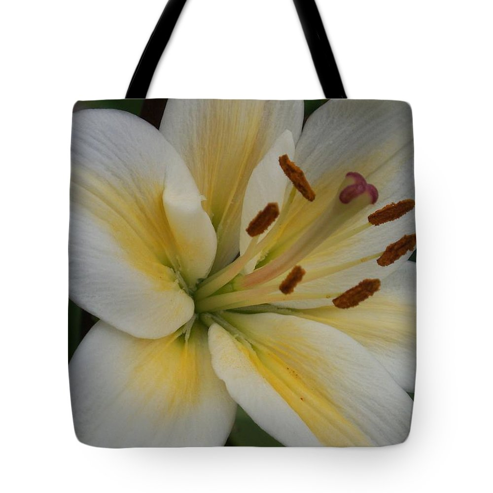 Flower Tote Bag featuring the photograph Flower Close Up 1 by Anita Burgermeister