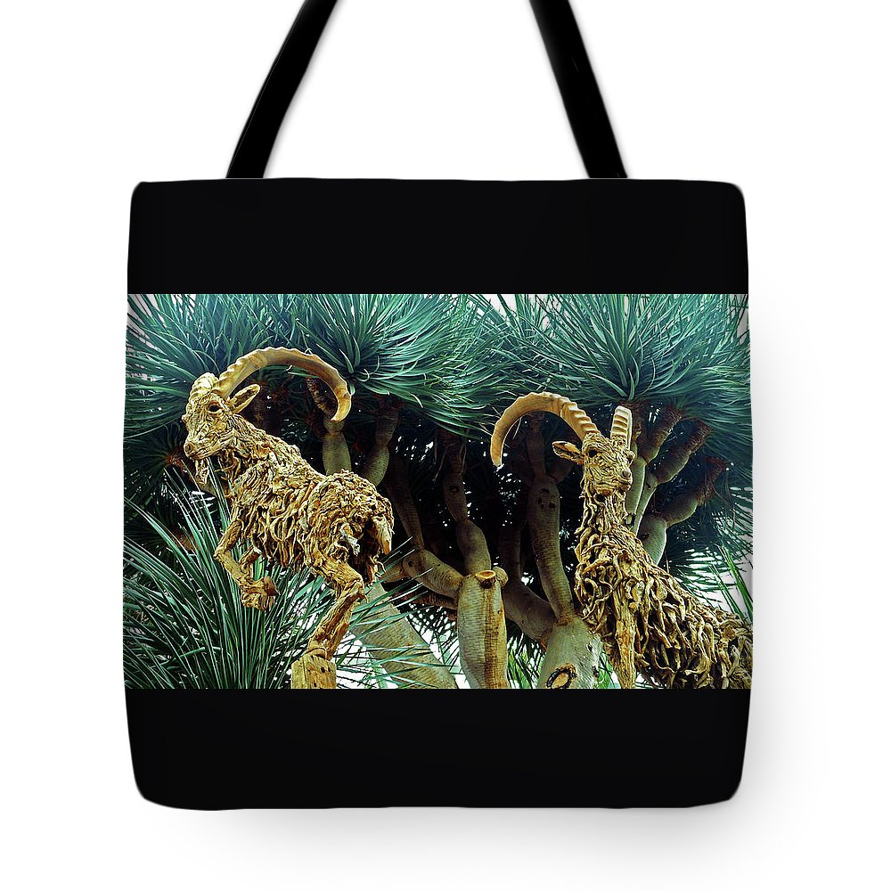 The Dooms Tote Bag featuring the photograph Flower Dome 28 by Ron Kandt