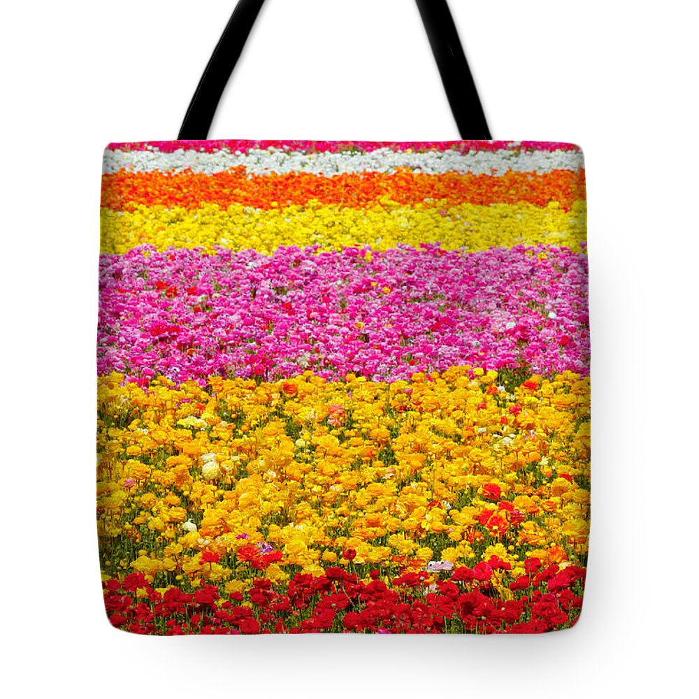Flower Tote Bag featuring the photograph Flower Fields Carlsbad Ca Giant Ranunculus by Christine Till
