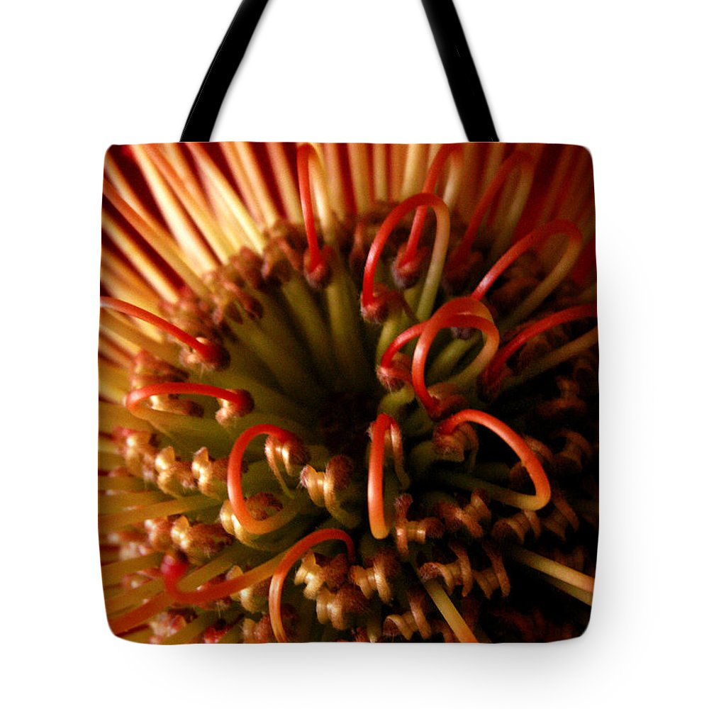 Protea Tote Bag featuring the photograph Flower Hawaiian Protea by Nancy Griswold