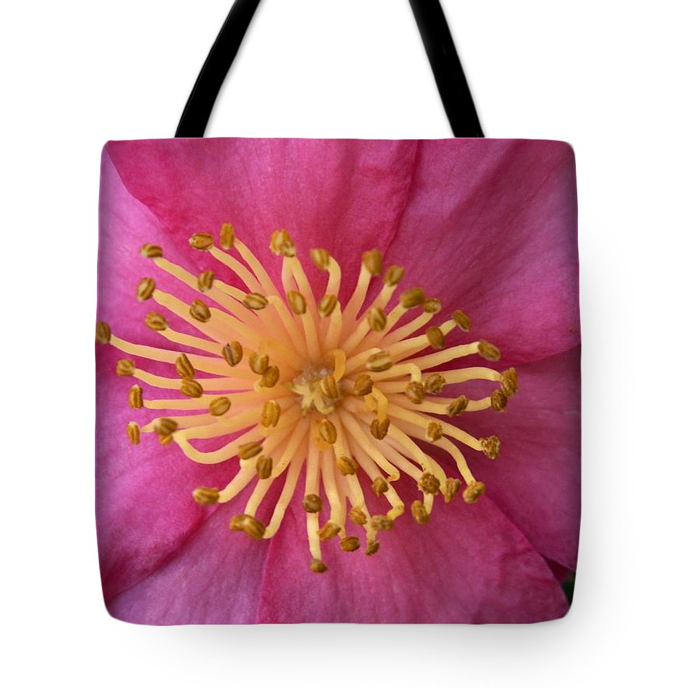 Flowers Tote Bag featuring the photograph Flower Macro by Amy Fose