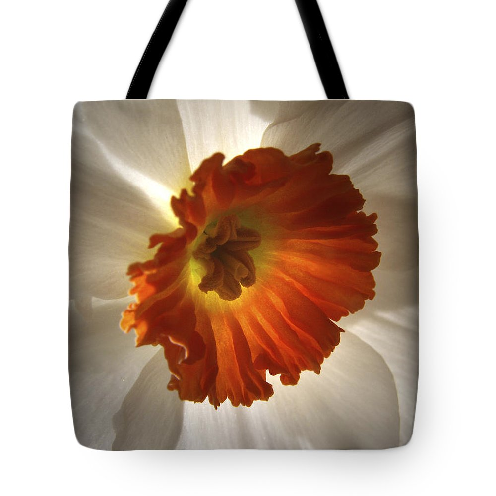 Flowers Tote Bag featuring the photograph Flower Narcissus by Nancy Griswold