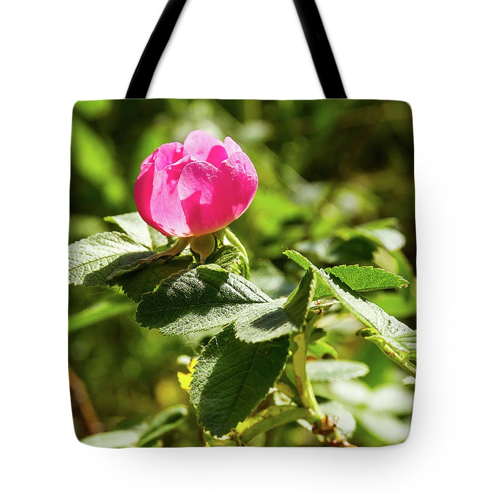 Eglantine Tote Bag featuring the photograph Flower Of Eglantine - 2 by Paul MAURICE