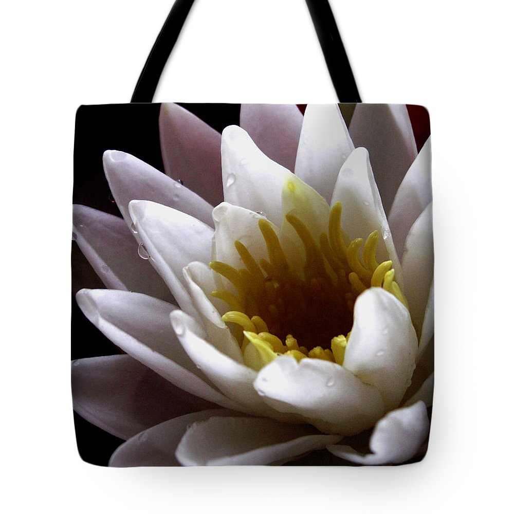 Flowers Tote Bag featuring the photograph Flower Waterlily by Nancy Griswold