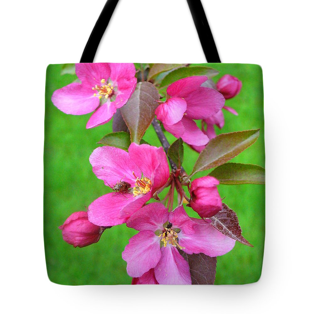Flowering Trees Tote Bag featuring the photograph Flowering Crab by Peggy King