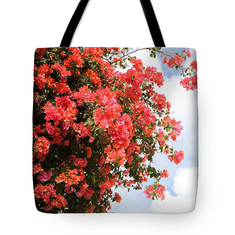 Hawaii Tote Bag featuring the photograph Flowering Tree by Nadine Rippelmeyer