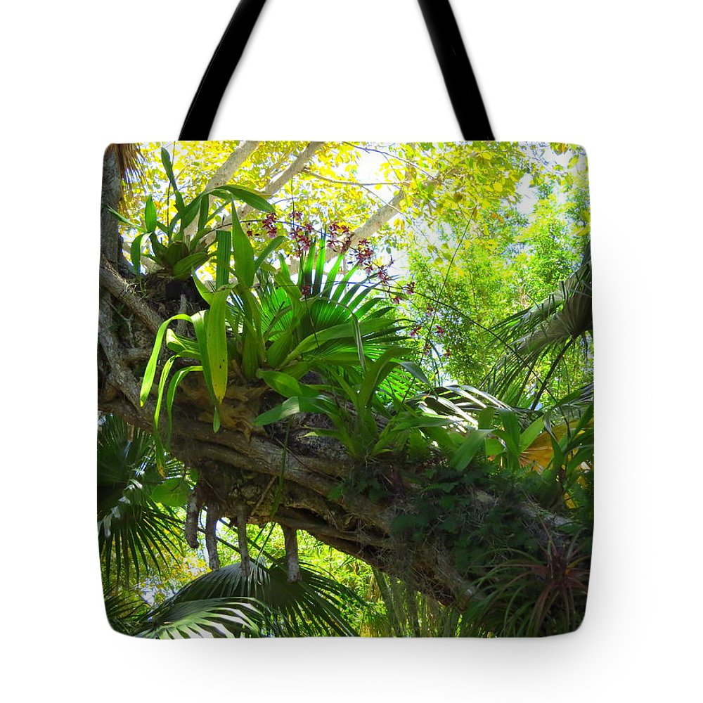 Nature Tote Bag featuring the photograph Flowering Twisted Roots by WanderBird Photographi