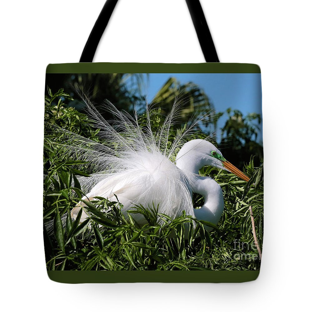Egret Tote Bag featuring the photograph Fluffy Great Egret by Carol Groenen
