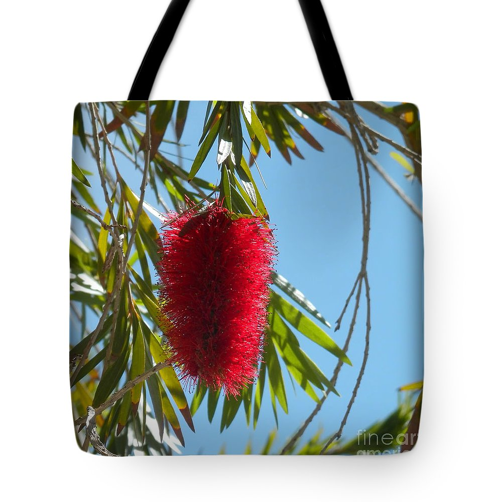 Laughlin Nv Tote Bag featuring the photograph Fluffy Reds At The Library by L Cecka