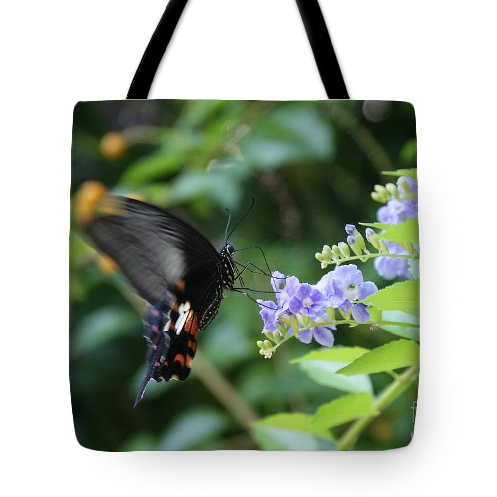Butterfly Tote Bag featuring the photograph Fly In Butterfly by Shelley Jones
