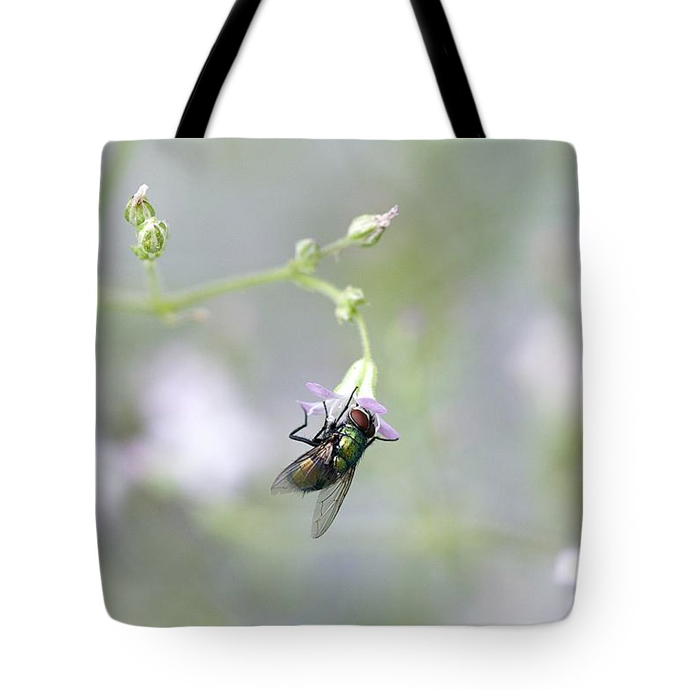 Fly Tote Bag featuring the photograph Fly On Flower 2 by Robert Skuja