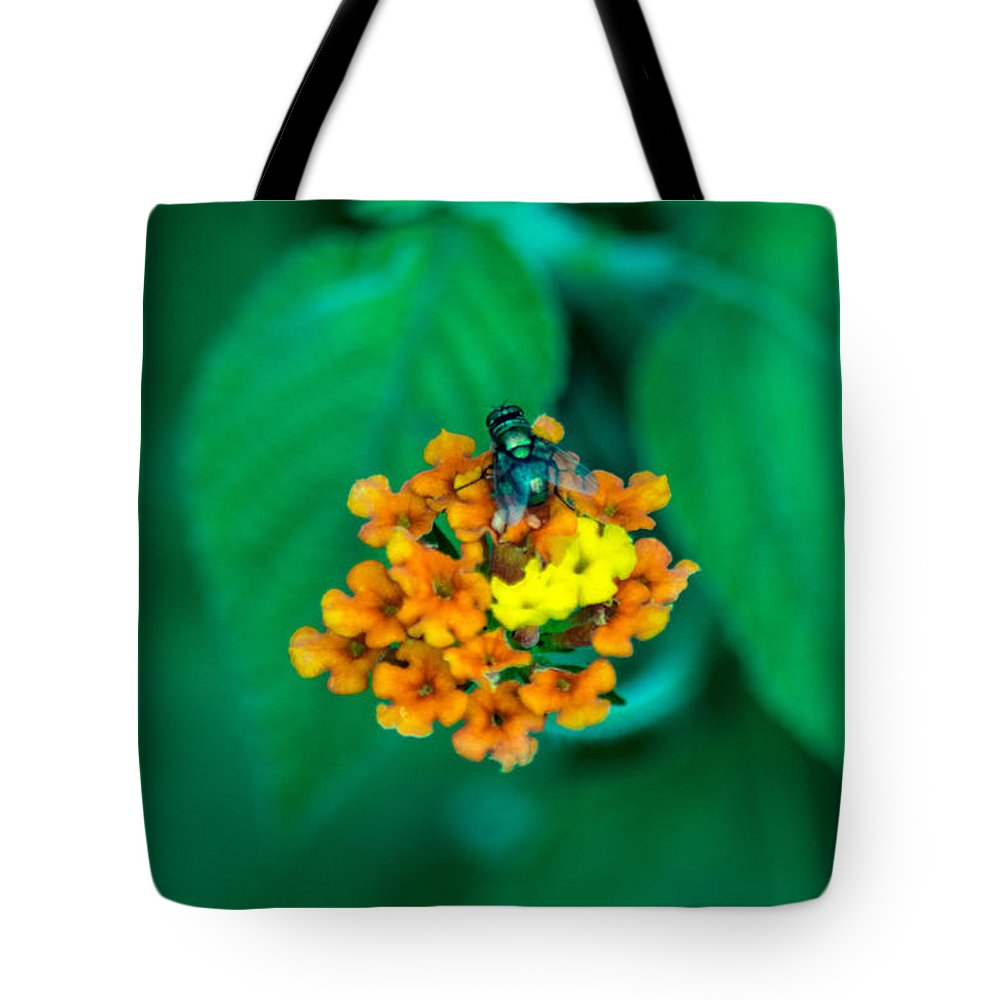 Fly Tote Bag featuring the photograph Fly On Flower by Totto Ponce