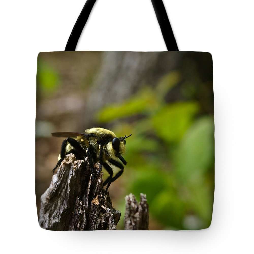 Fly Tote Bag featuring the photograph Fly On Mountain by Douglas Barnett