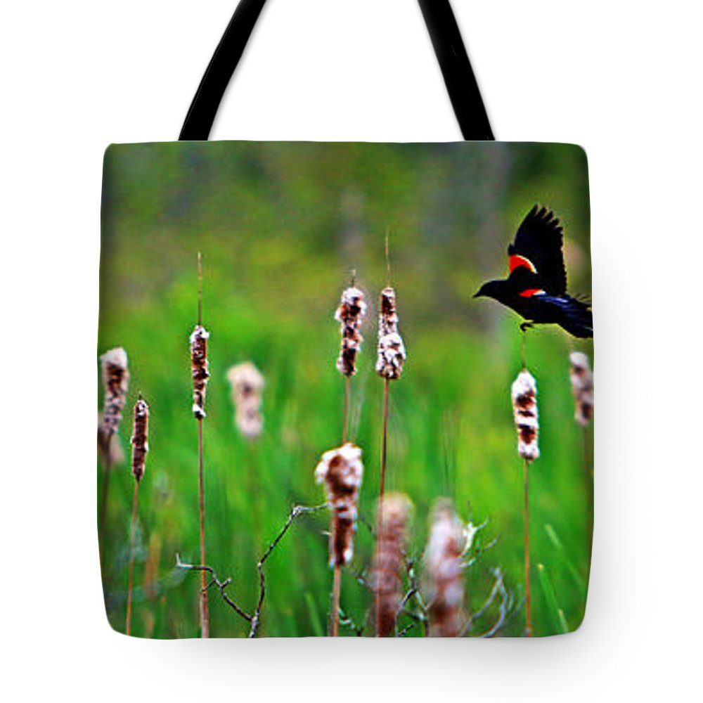 Sun Tote Bag featuring the photograph Flying Amongst Cattails by James F Towne
