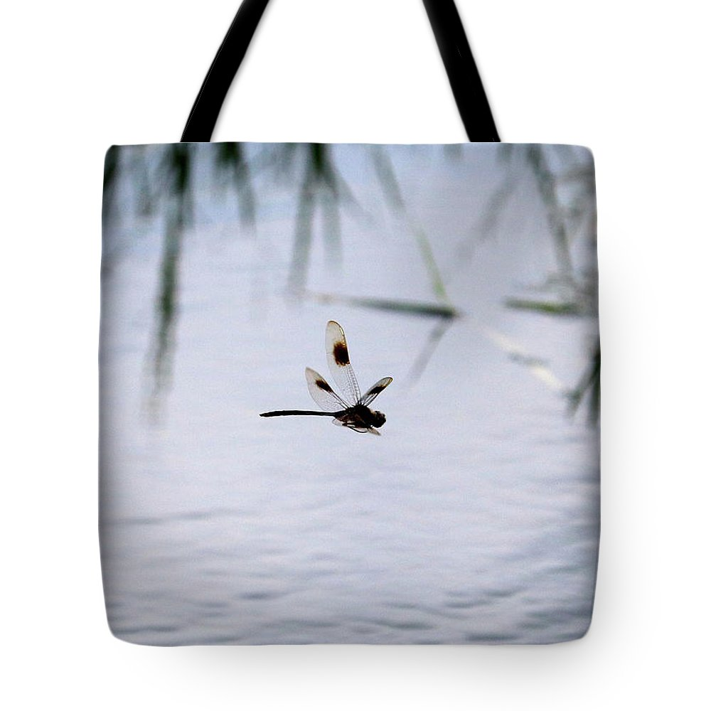 Dragonfly Tote Bag featuring the photograph Flying Dragonfly Over Pond With Reeds by Carol Groenen
