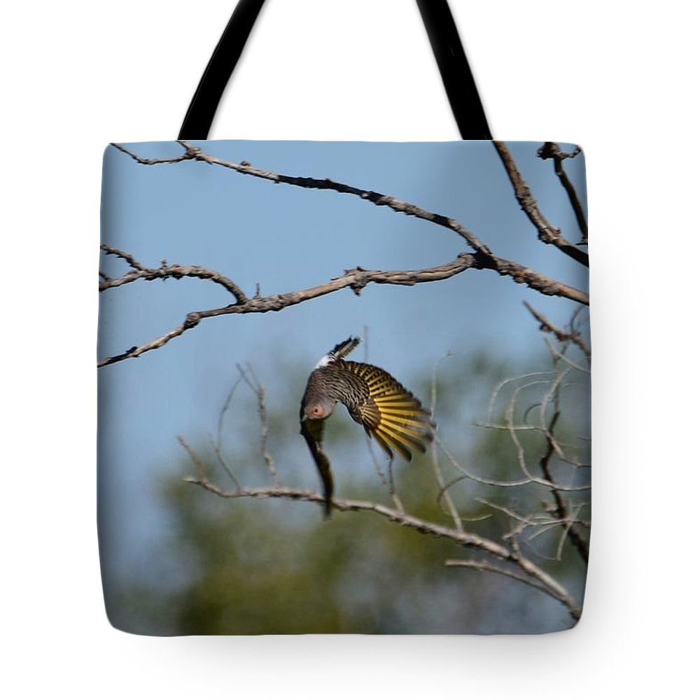 Bird Tote Bag featuring the photograph Flying Flicker by Floyd Kauffman