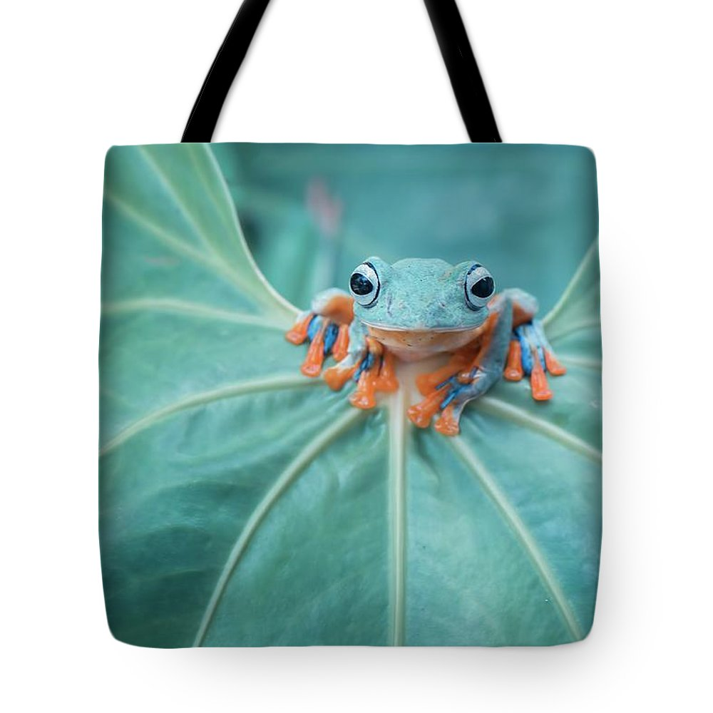 Flying Frog Tote Bag featuring the photograph Flying Frog Wallace by Riza Arif Pratama