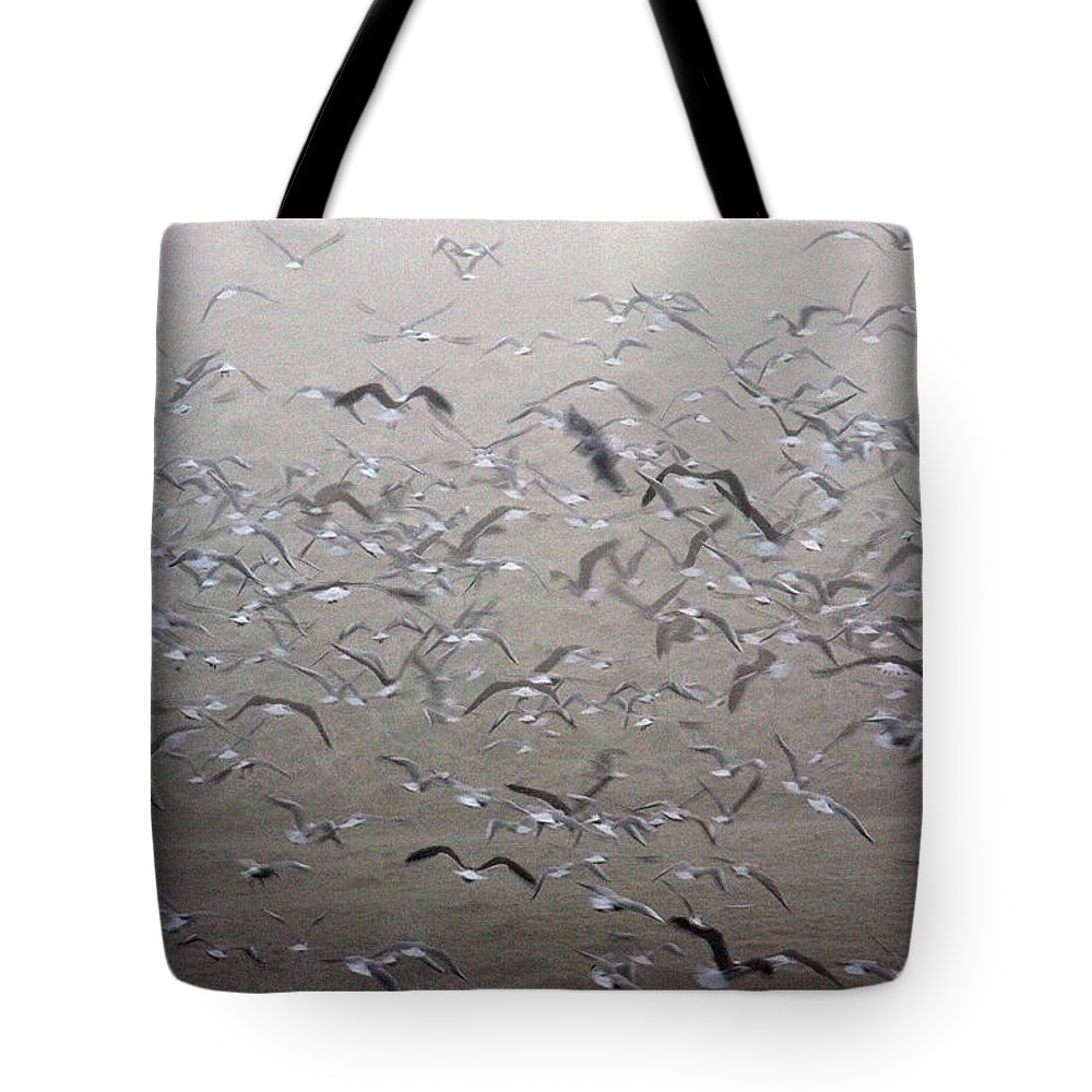 Flight Tote Bag featuring the photograph Flying Gulls by Bob Kemp