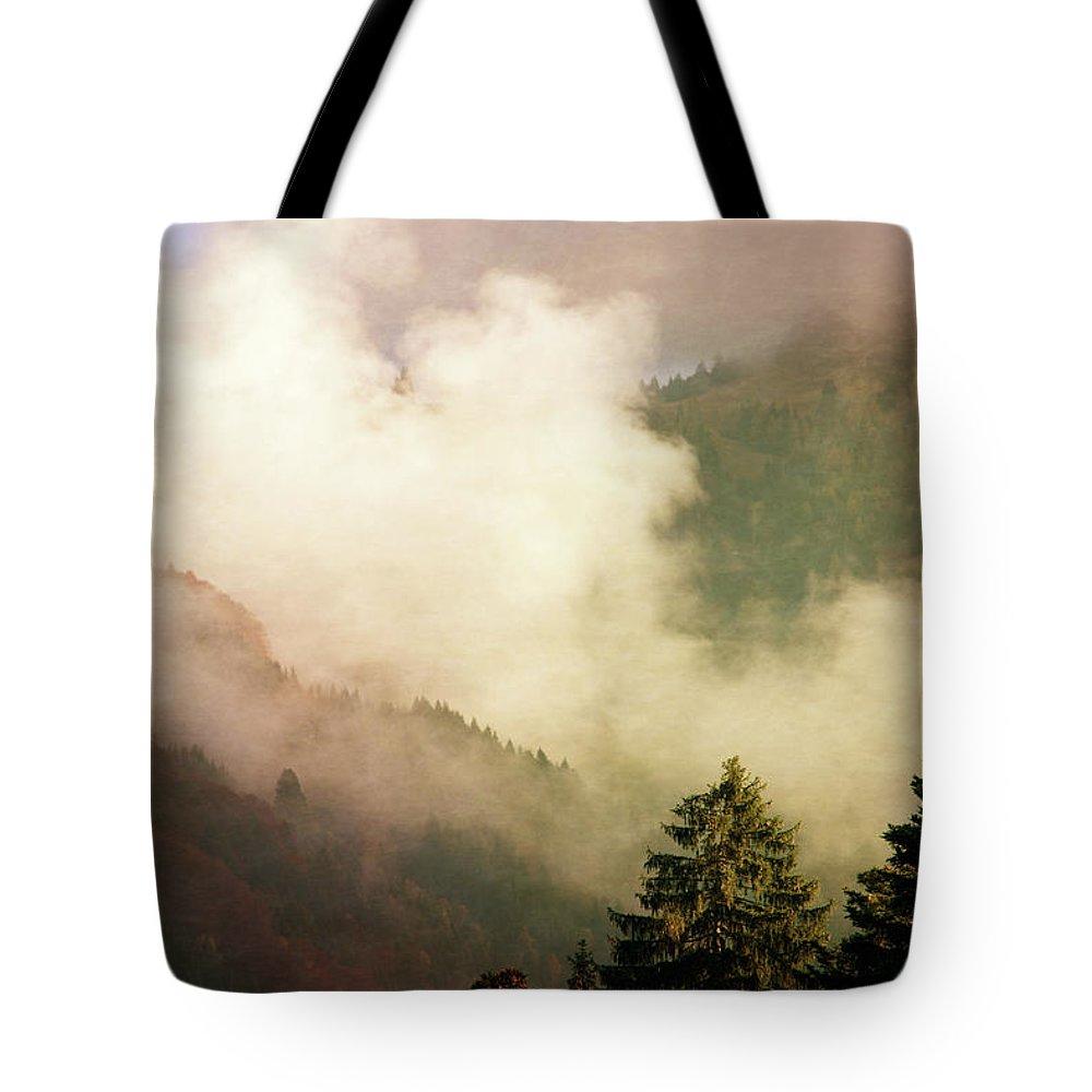 Susann Serfezi Tote Bags