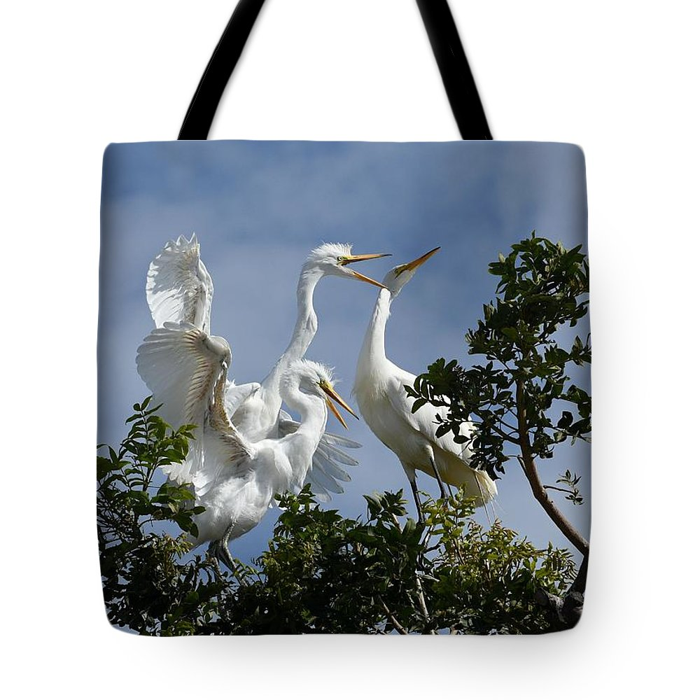 Great Egrets Tote Bag featuring the photograph Food Competition by Fraida Gutovich