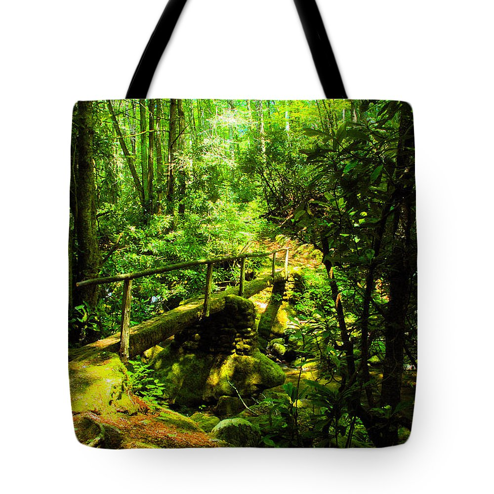 Art Tote Bag featuring the painting Foot Bridge by David Lee Thompson