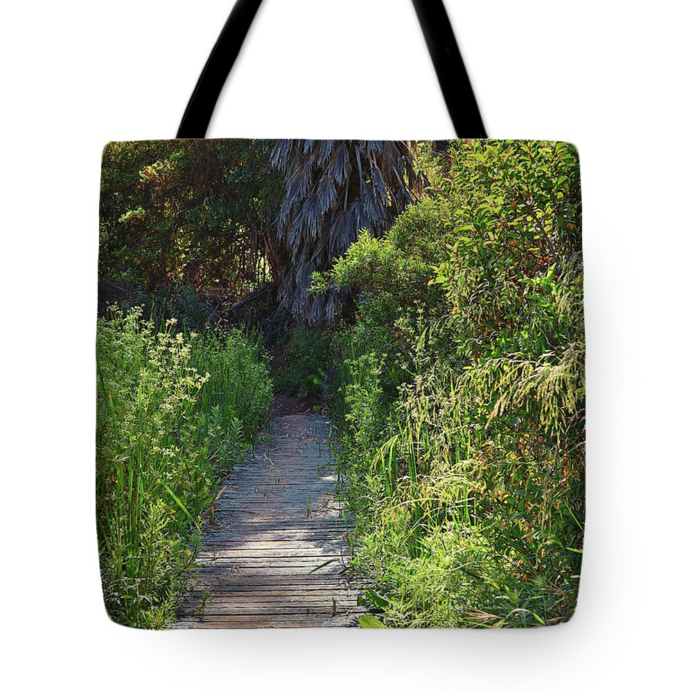Linda Brody Tote Bag featuring the photograph Footpath In Peters Canyon I by Linda Brody