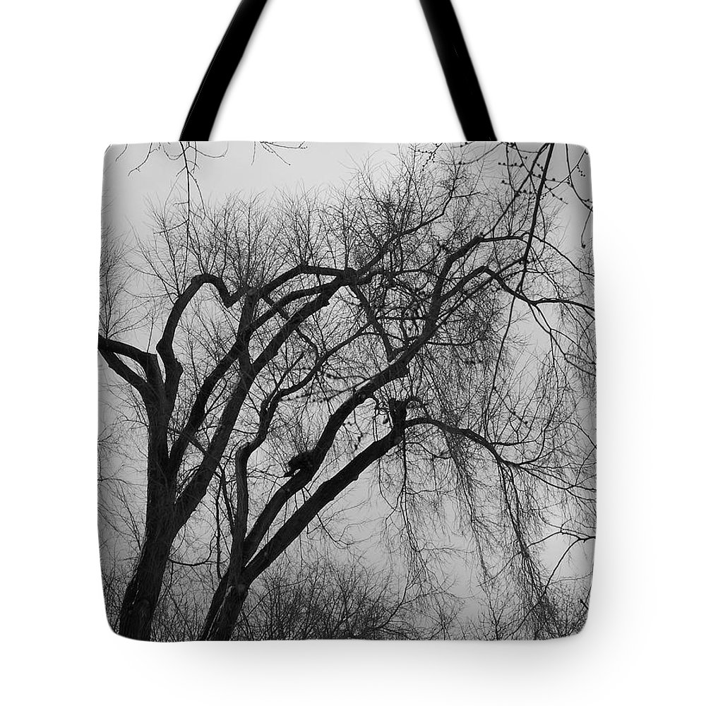 Tree Tote Bag featuring the photograph Foreboding by Michelle Miron-Rebbe