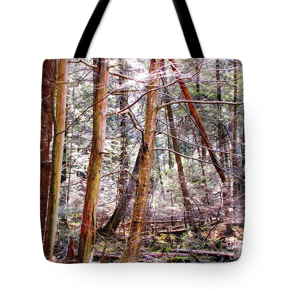 Tote Bag featuring the photograph Forest Bling by Melissa Stoudt