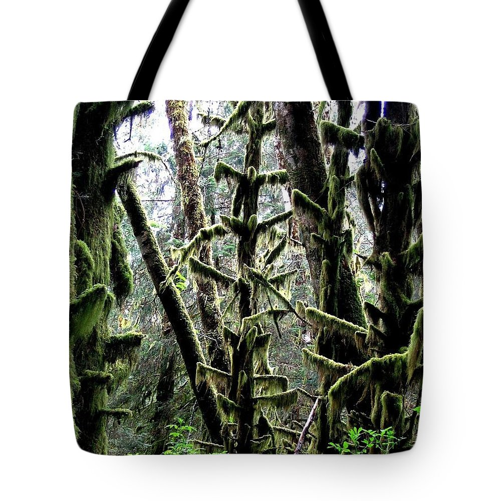 Ecola State Park Tote Bag featuring the photograph Forest Finery by Will Borden