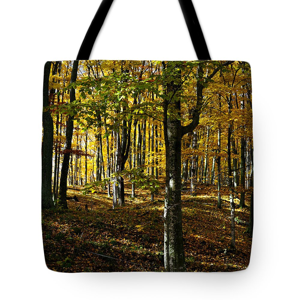 Trees Tote Bag featuring the photograph Forest Floor Two by Tim Nyberg