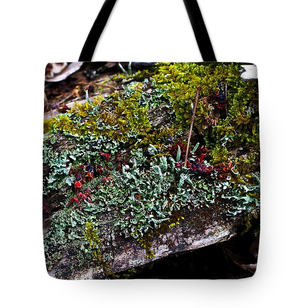 Forest Tote Bag featuring the photograph Forest Floral Delight by Douglas Barnett