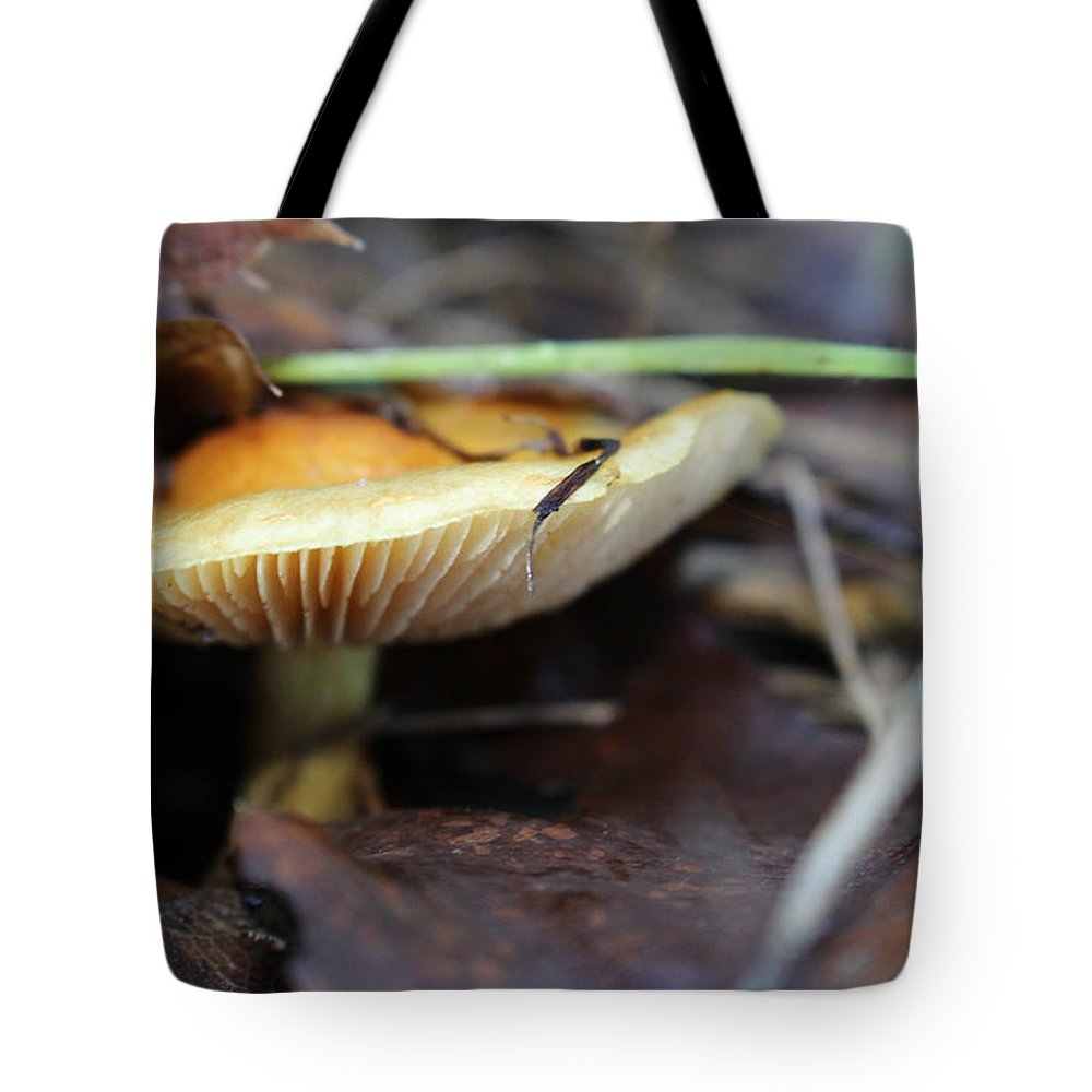 Mushroom Tote Bag featuring the photograph Forest Fungi by Clyde Dellinger