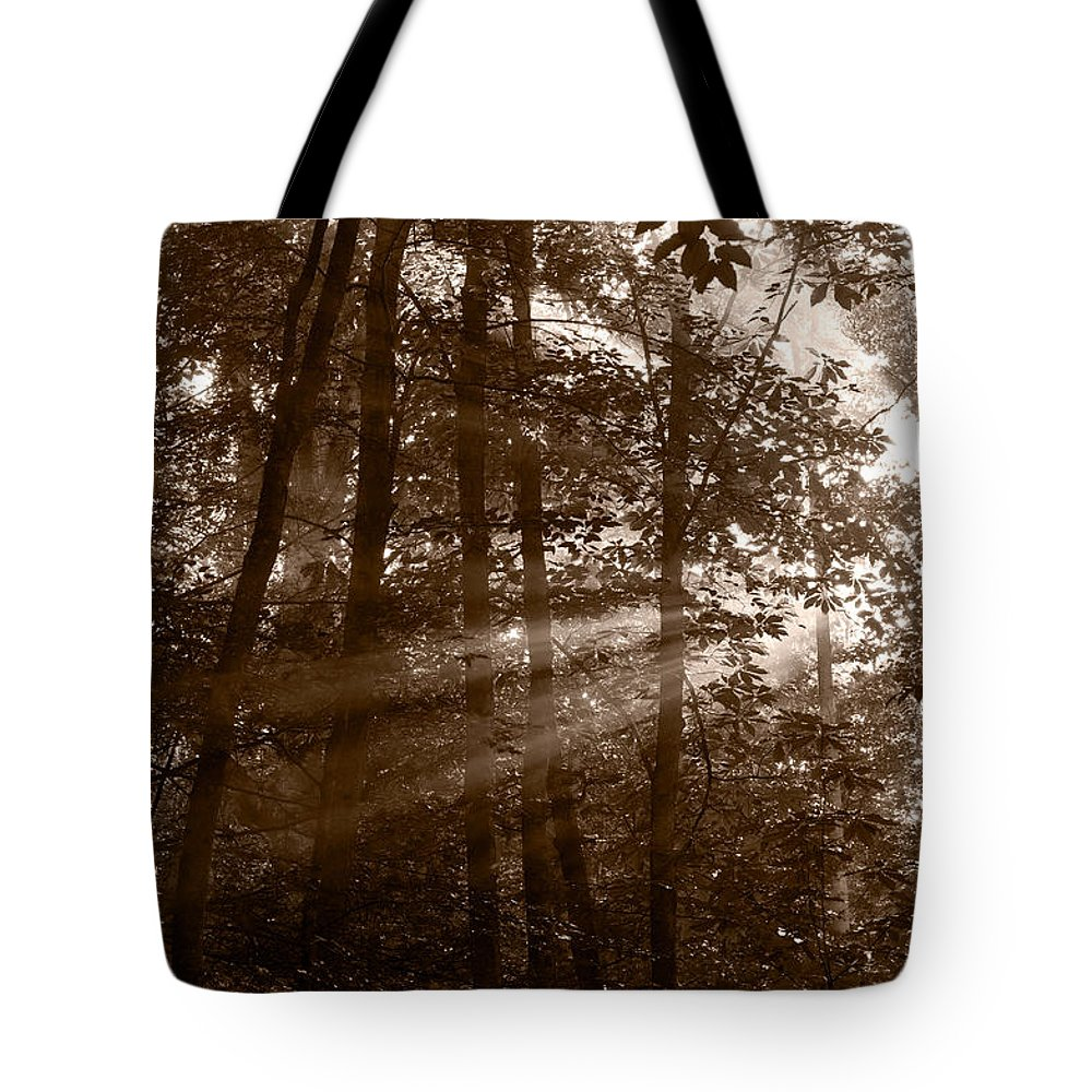 Black Tote Bag featuring the photograph Forest Mist B And W by Steve Gadomski