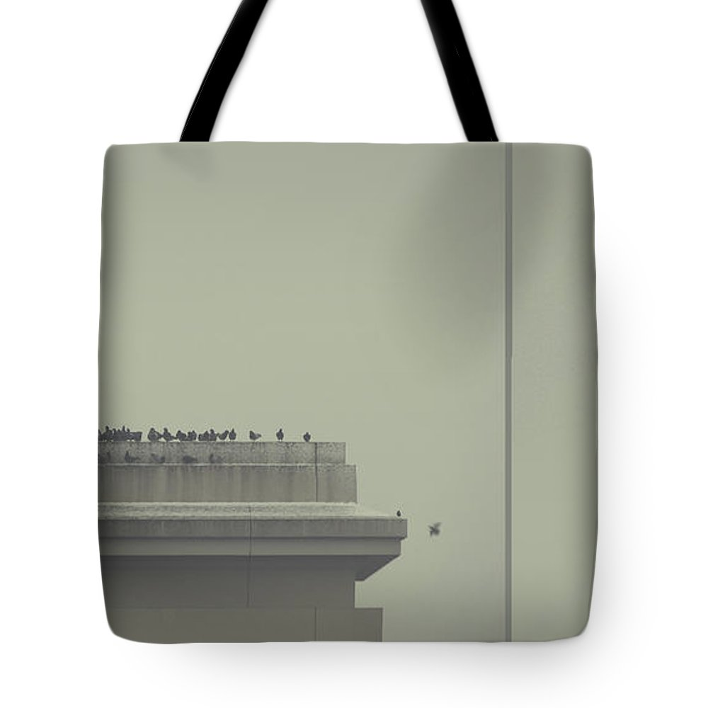 Birds Tote Bag featuring the photograph Forgiveness by Dana DiPasquale