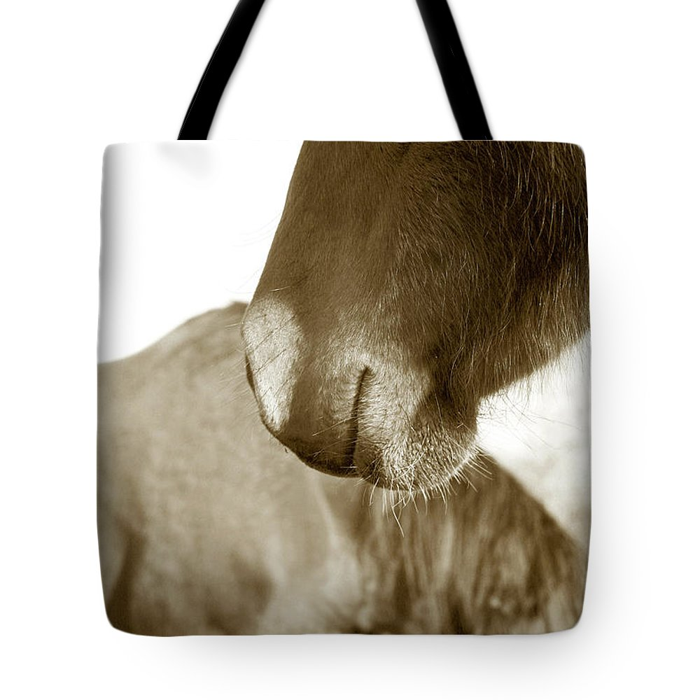 Horse Tote Bag featuring the photograph Form Of A Horse by Toni Hopper