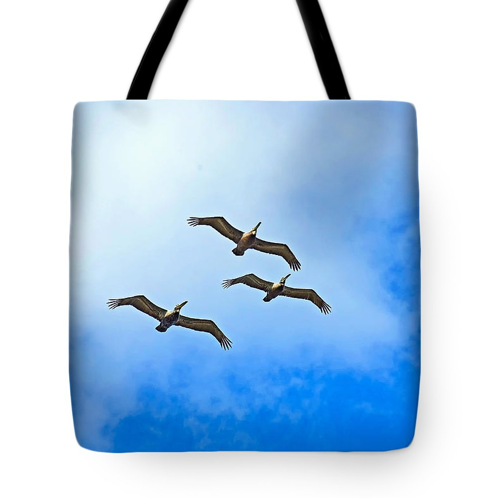 Brown Pelicans Tote Bag featuring the photograph Formation by Robert Brown