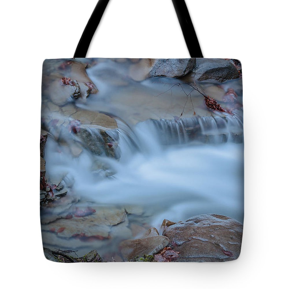 Landscape Tote Bag featuring the photograph Former Snow by Lyudmila Prokopenko