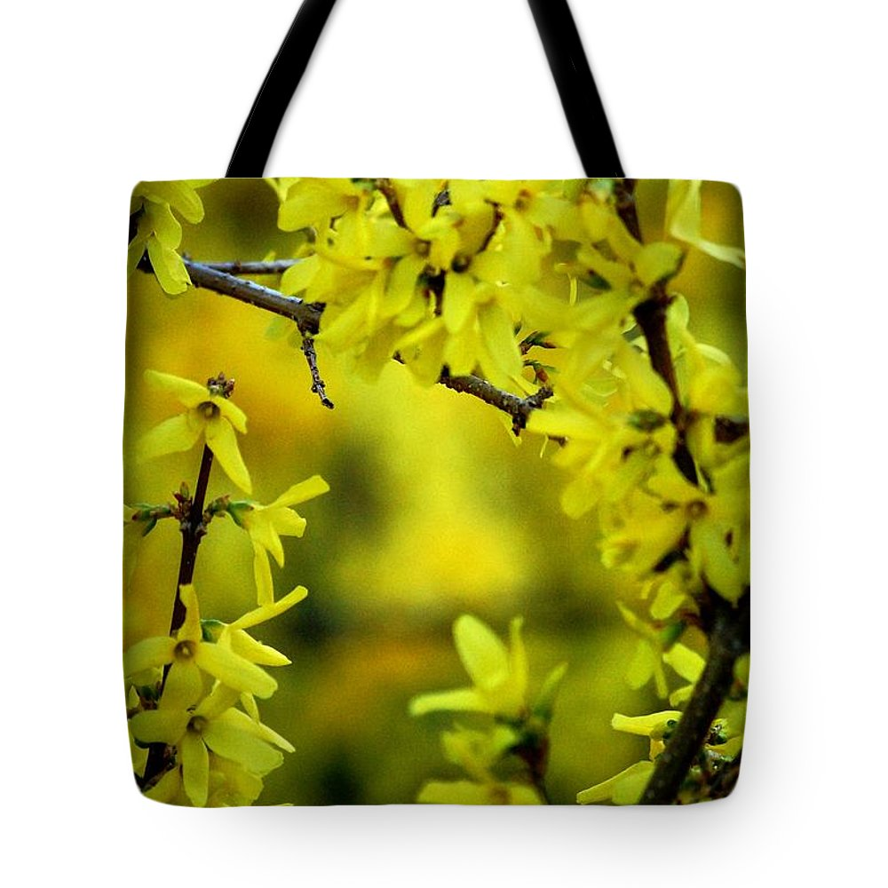 Spring Tote Bag featuring the photograph Forsythia At The Hacienda by David Lane
