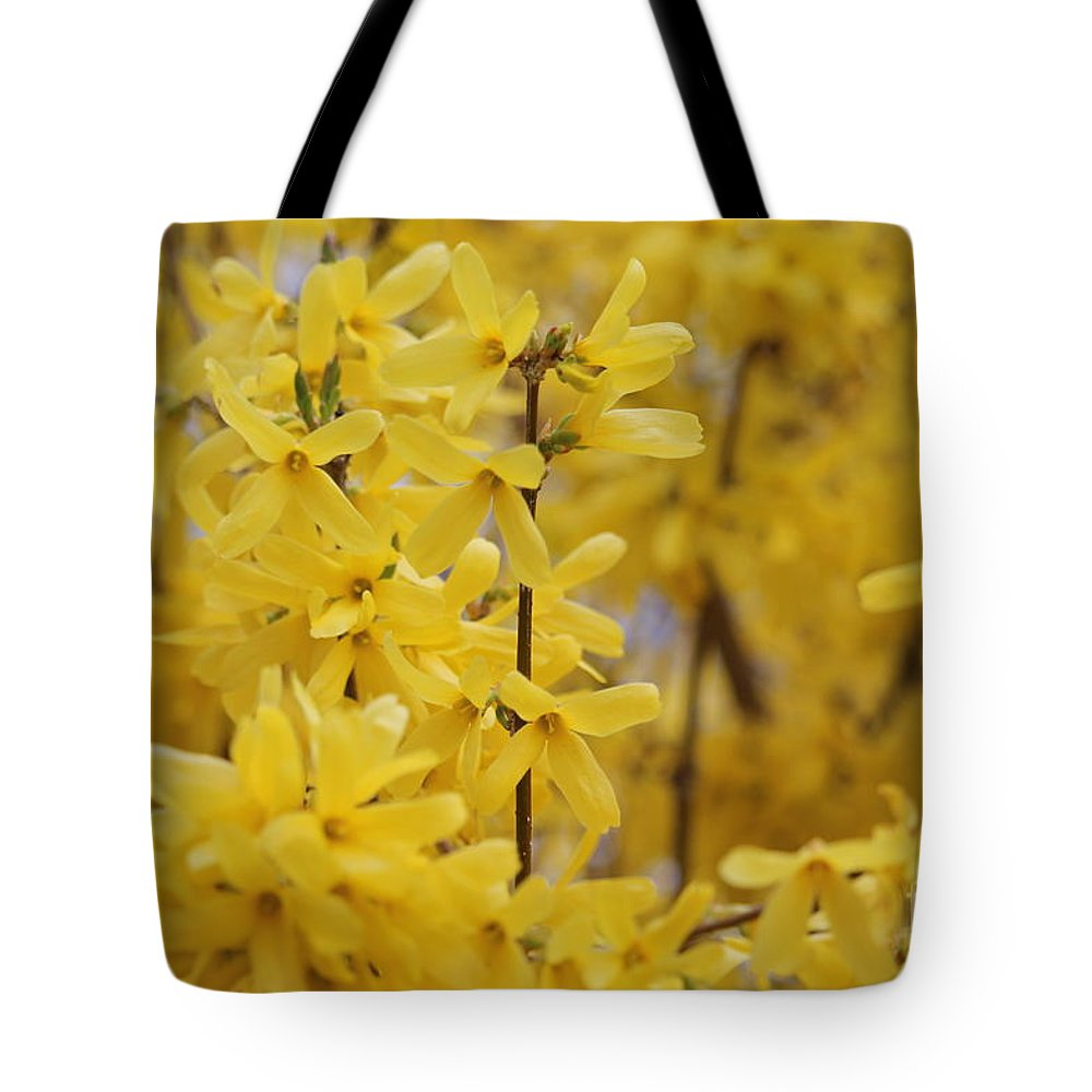 Spring Tote Bag featuring the photograph Forsythia by Ellen Flayderman