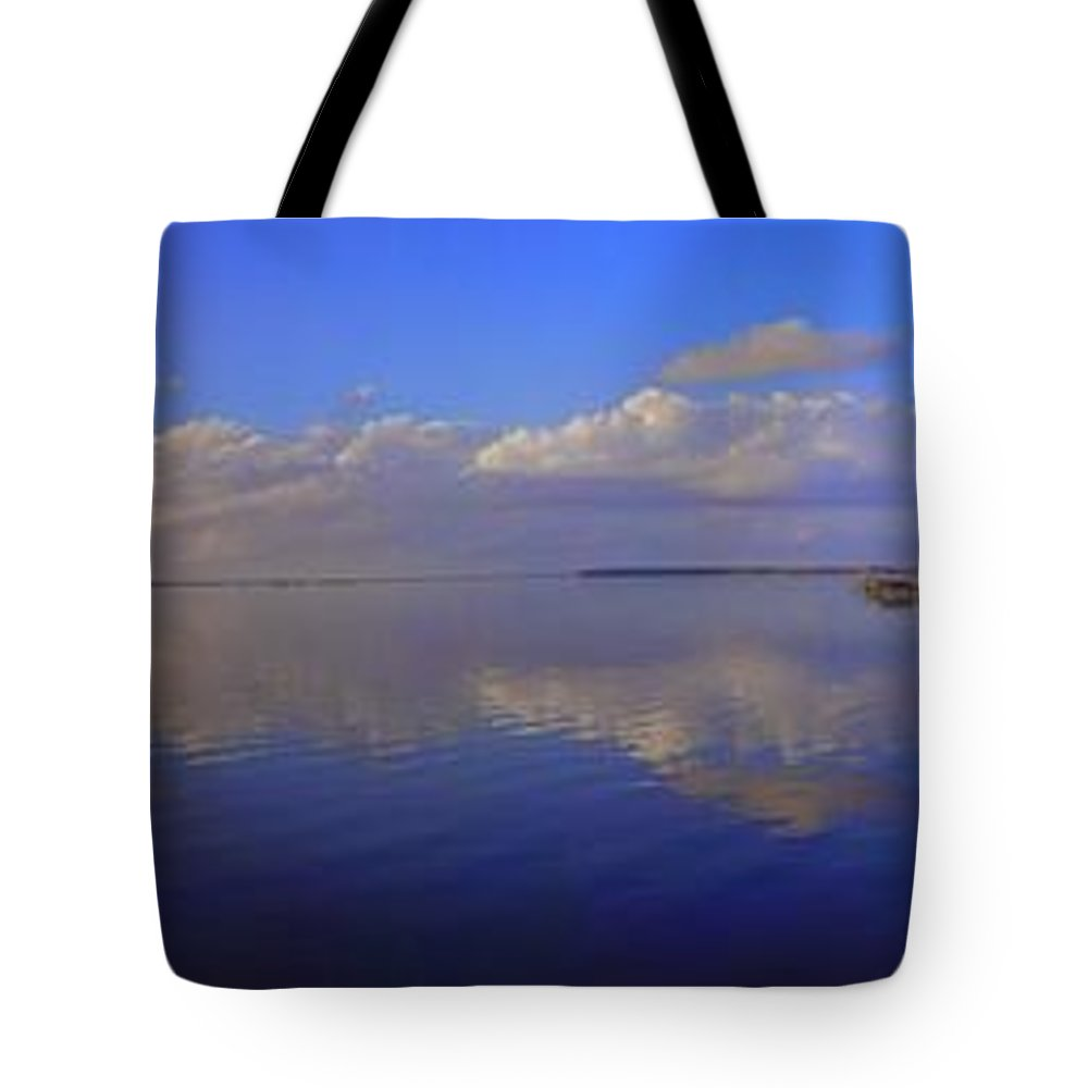 Landscapes Tote Bag featuring the photograph Fort Watson Panorama by Noel Adams