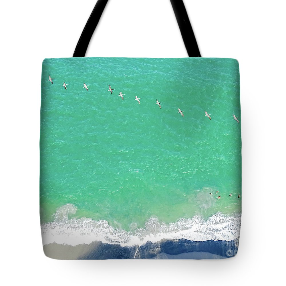 Panama Tote Bag featuring the photograph Forteen Pelicans by Camille Pascoe