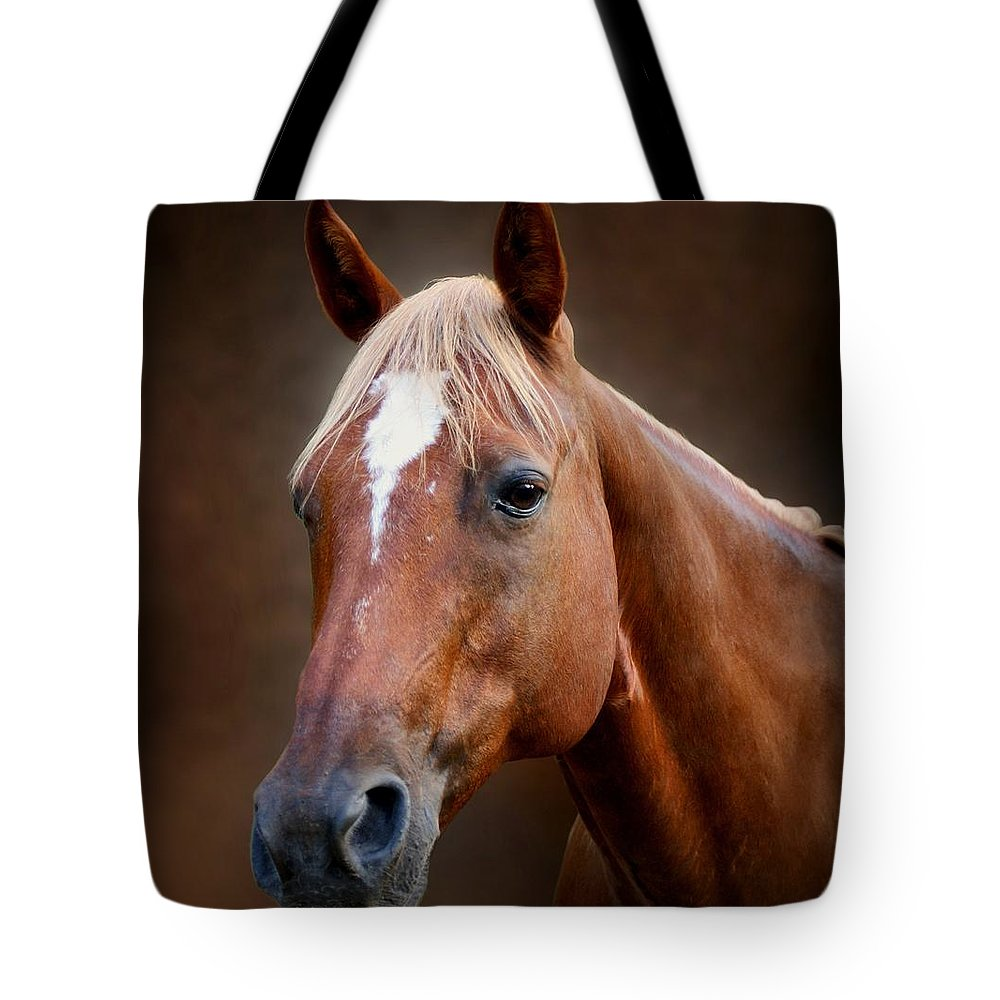 Horse Tote Bag featuring the photograph Fox - Quarter Horse by Sandy Keeton