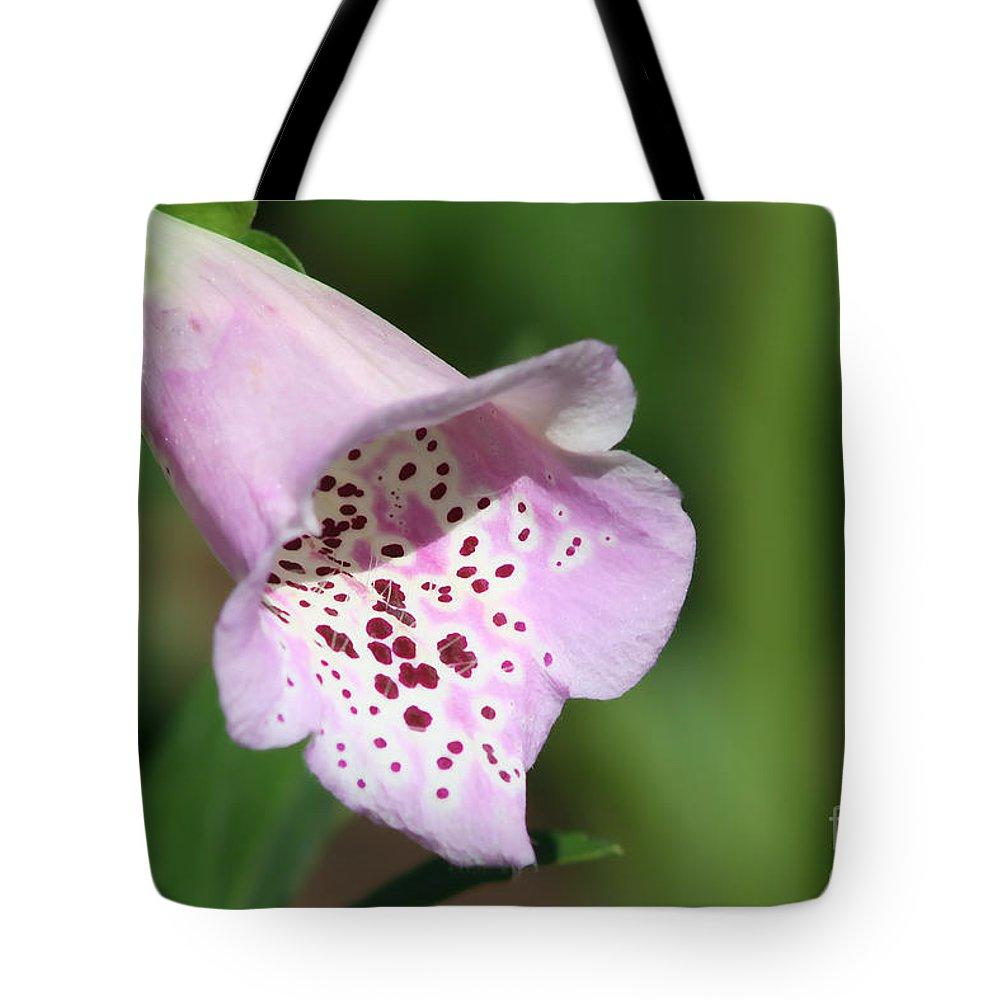Foxglove Tote Bag featuring the photograph Foxglove by Teresa Zieba