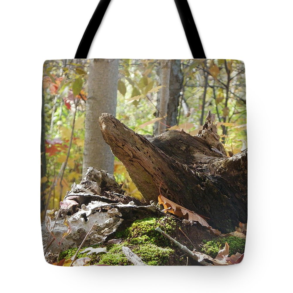 Nature Tote Bag featuring the photograph Foxy Stump by Peggy King