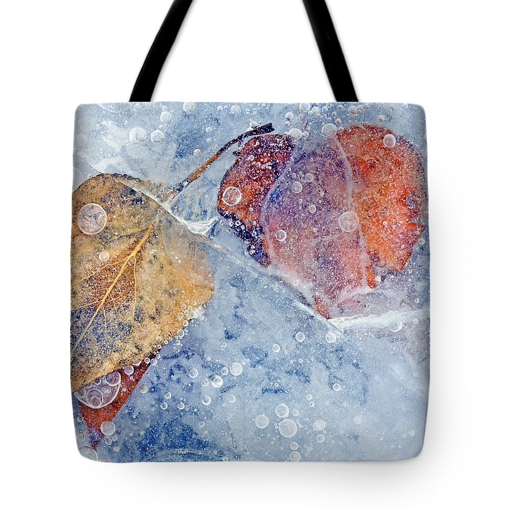 Ice Tote Bag featuring the photograph Fractured Seasons by Mike Dawson