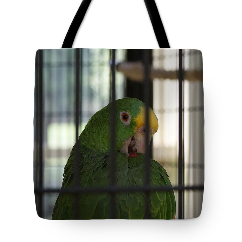 Parrot Tote Bag featuring the photograph Framed by Shelley Jones