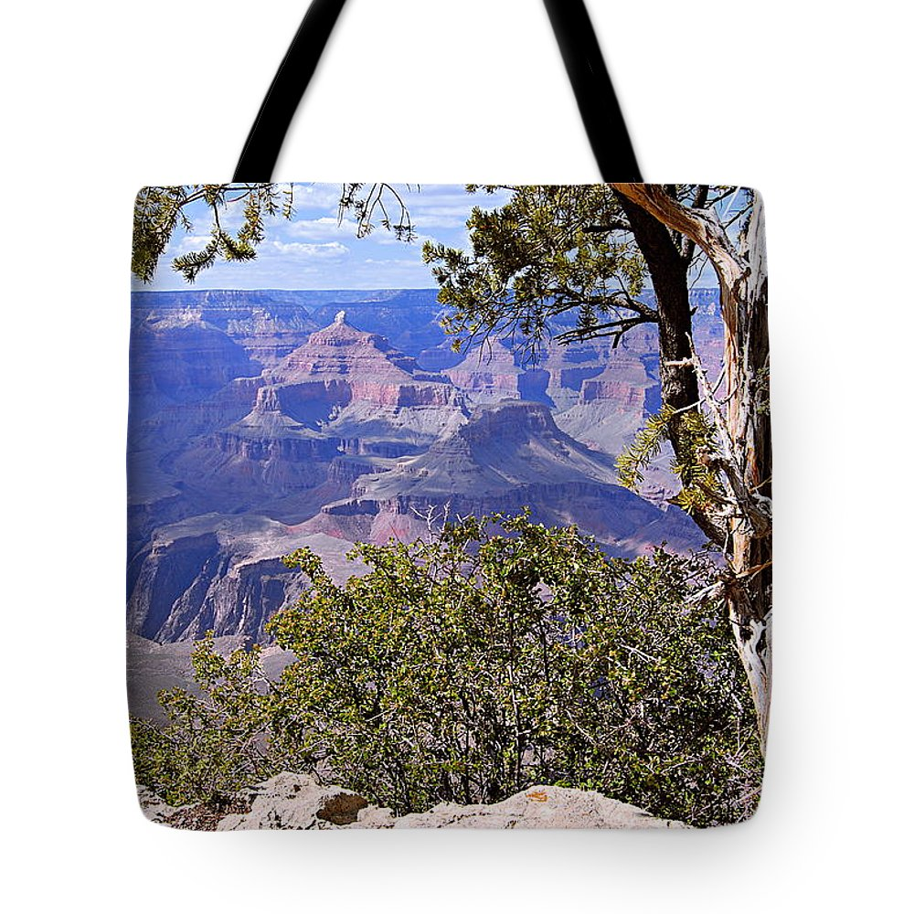 Grand Canyon National Park Tote Bag featuring the photograph Framed View - Grand Canyon by Larry Ricker