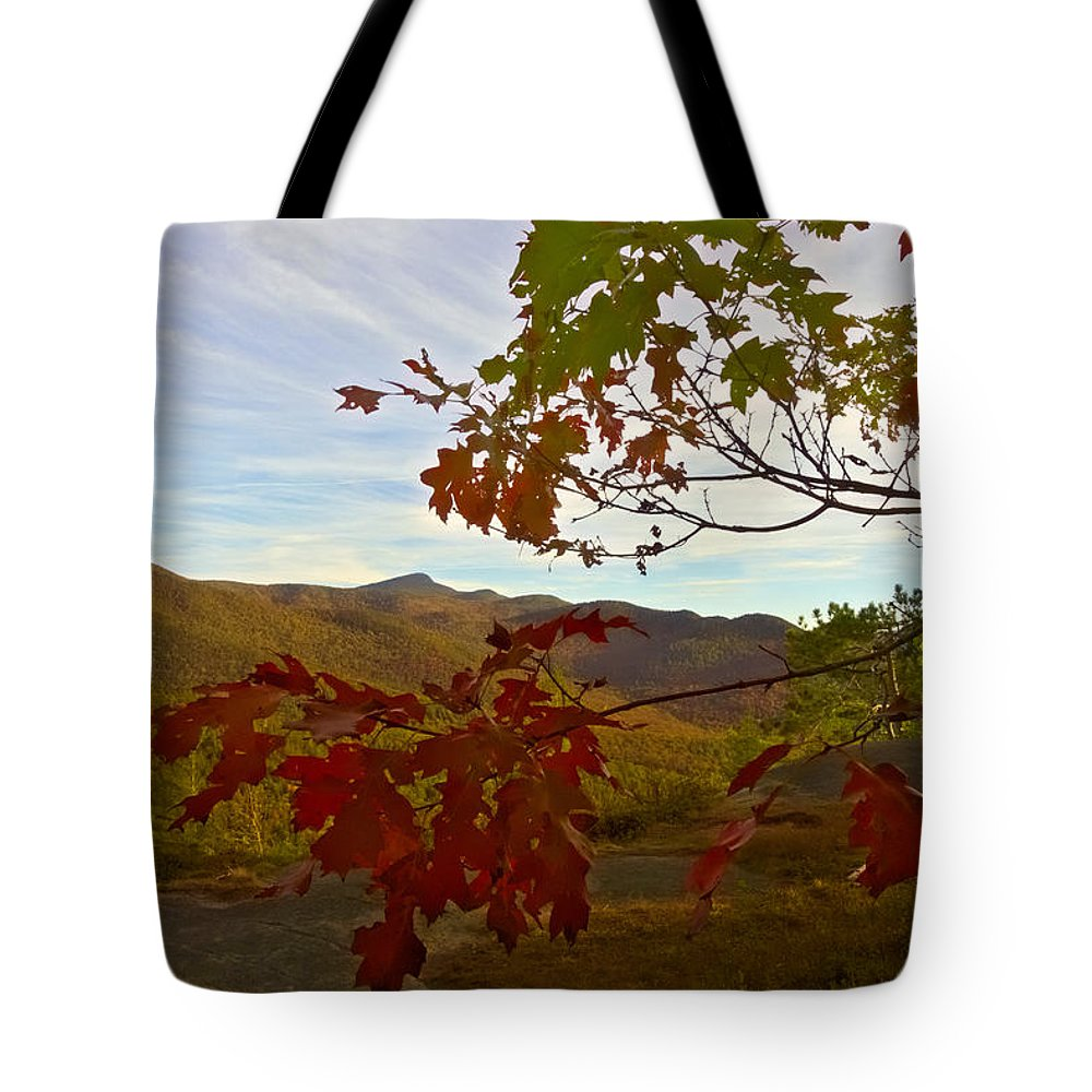 Autumn Tote Bag featuring the photograph Framework by Amanda Jones